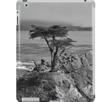 Lone Cypress Tree #2 iPad Case/Skin