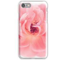 Peach Wild Garden Rose Isolated on White iPhone Case/Skin