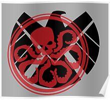Hail Hydra Poster