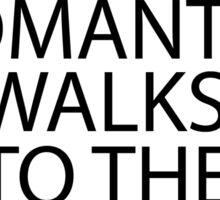 I Like Long Romantic Walks to the Make Up Aisle Sticker