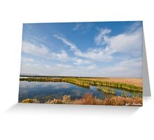 Tule Lake Marshland Greeting Card