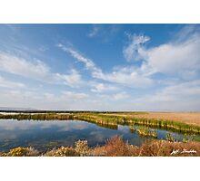 Tule Lake Marshland Photographic Print