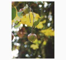 Autumn Sun rays #9, raindrops on apple Kids Tee