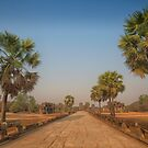 The Walk to Angkor Wat by Sam  Parsons