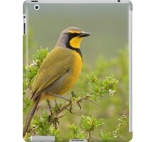 Yellow Bird iPad Case/Skin