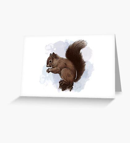 Squirrel.  Greeting Card