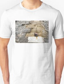 The Hanging Jar - Rough Weathered Stones, Rust and Ceramics Unisex T-Shirt