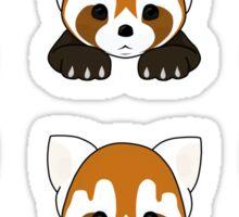 Lesser Panda / Red Panda Sticker Sheet Sticker