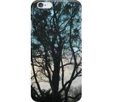 Vienna Trees iPhone Case/Skin
