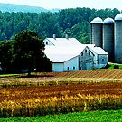 Farm With White Silos by Susan Savad