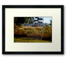 The Web Framed Print