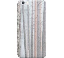 31.3.2016: Foggy Pine Tree Forest iPhone Case/Skin