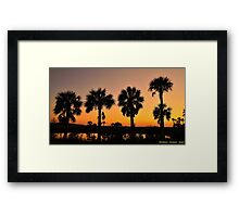 4 Palms In After Glow Framed Print
