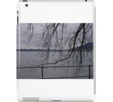 Almost Winter iPad Case/Skin