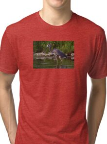 Great Blue Heron catches fish Tri-blend T-Shirt