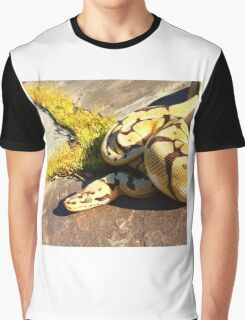Bumblebee ball python  Graphic T-Shirt