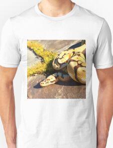 Bumblebee ball python  Unisex T-Shirt