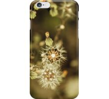 Floral 11 iPhone Case/Skin