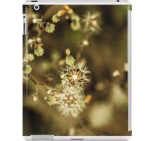 Floral 11 iPad Case/Skin