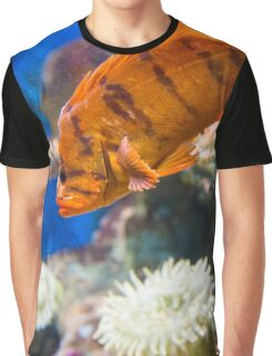 Orange Reef Fish Graphic T-Shirt