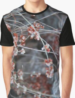 Dry flower blossoms. Chiricahua Mountains, Arizona, USA. Graphic T-Shirt