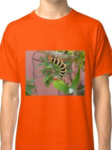 A Quiet Lunch Classic T-Shirt