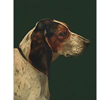 Reproduction vintage dog painting Photographic Print