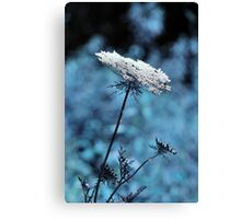 Dreaming of Company Canvas Print