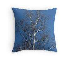 birch tree without leaves spring Throw Pillow