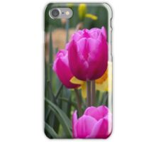 BEAUTIFUL TULIPS AND JONQUILS iPhone Case/Skin