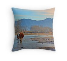 Mountain village winter brook Throw Pillow