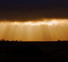Skylight by Paul Finnegan