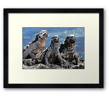The Proud Trio - Limited Edition Print 1/10 Framed Print