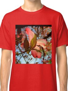 Backlit Dogwood Classic T-Shirt