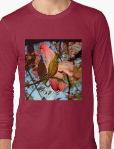 Backlit Dogwood Long Sleeve T-Shirt