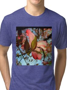 Backlit Dogwood Tri-blend T-Shirt