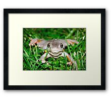 Not a Care in the World - Limited Edition Prin 1/10 Framed Print