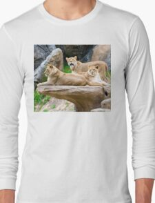 Lioness resting on Stone Cliff Long Sleeve T-Shirt
