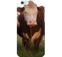 Cow Clan (Ripped Version). Tucson, Arizona, USA. iPhone Case/Skin