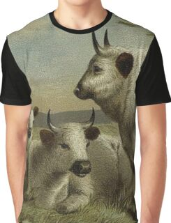 Vintage White Cattle Picture Graphic T-Shirt