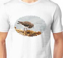 Bird Book Apparel - Black Turnstone Unisex T-Shirt