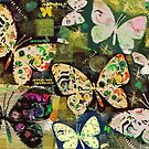 Butterflies by Betsy  Seeton