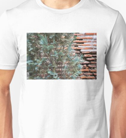 Green and Red - Cypress Branches Over Antique Roman Brick Wall Unisex T-Shirt
