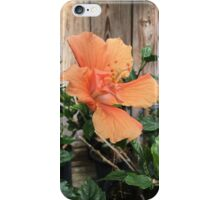Orange Hibiscus iPhone Case/Skin
