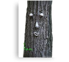 Hello, Welcome To My Forest! Canvas Print