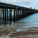 Flinders Jetty by Jeanette Varcoe.