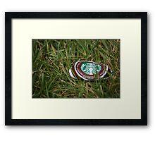Starbucks Picnic Framed Print