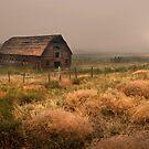 Legacy - Haynes Ranch Barn by John Poon