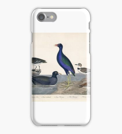 Alexander Wilson Bird Prints American Ornithology  iPhone Case/Skin