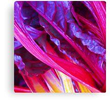 Rhubarb in Purple Canvas Print